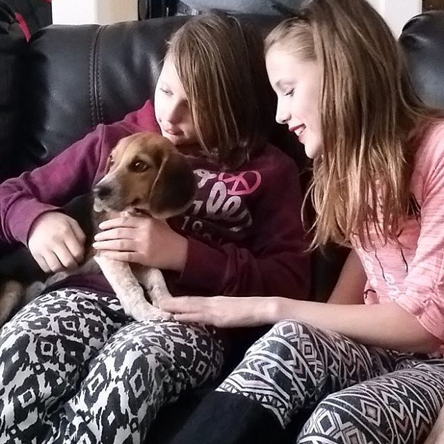 Lexi and Mallory loving on their uncles new pup!